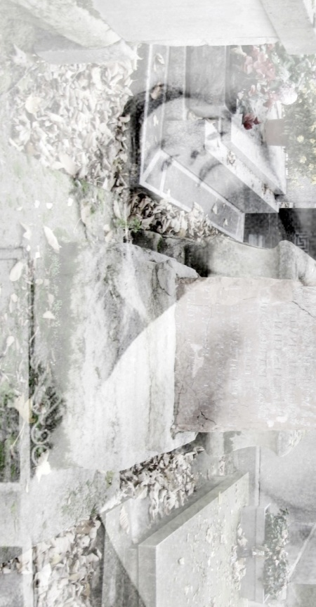 IMG_0610-cropgc